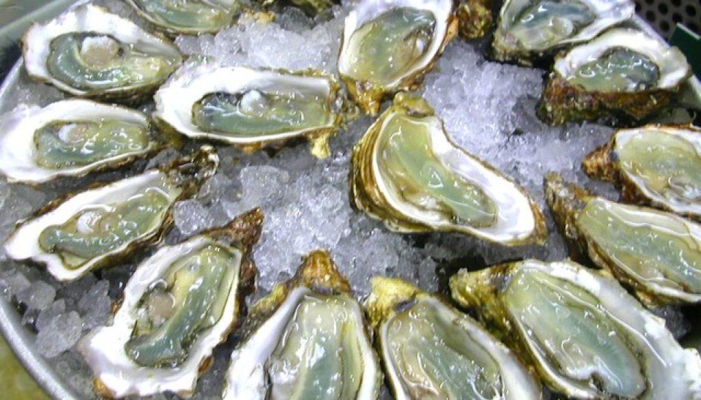 one-dozen-oysters1.jpg